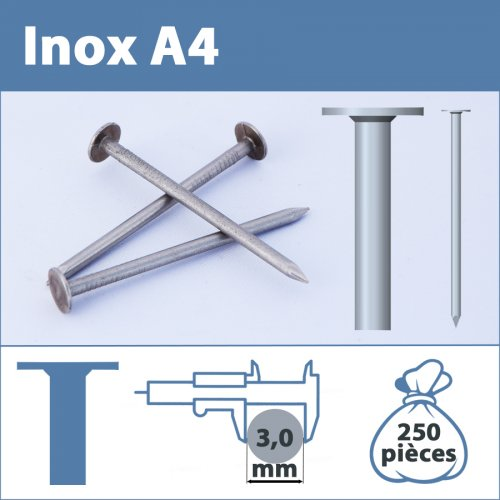 Pointe Inox A4 (316L) 3 X 30 mm lisse tête plate large  250 pièces